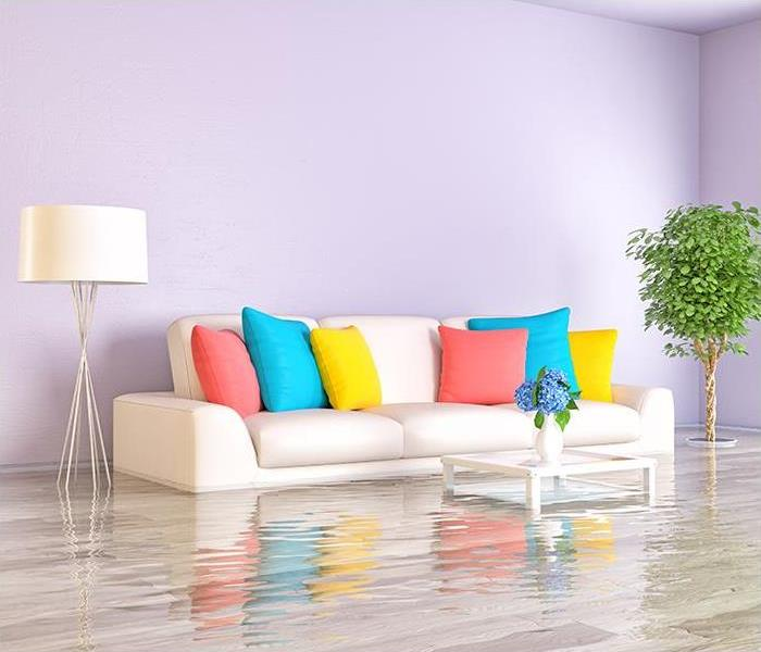 Why SERVPRO You Need Our Experts After A Water Damage Incident Occurs In Your Michigan City Home