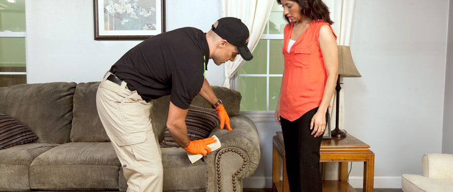 Michigan City, IN carpet upholstery cleaning